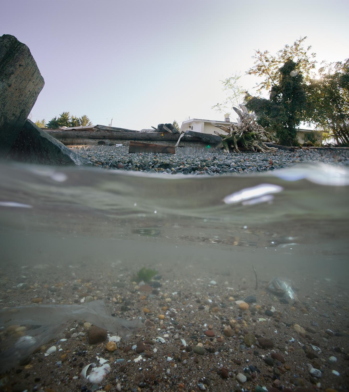 Port Richmond 01, 2011